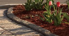 Curb and Edging - An