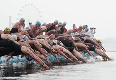 Open water swimming at 14th FINA world championships