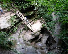 Turkey Run State Park, Indiana  http://www.turkeyrunstatepark.com/hiking_trails/trail3/ladders.htm