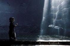 """Small fish, Big pond"""