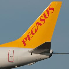 Pegasus Airlines Boeing 737-86N Pegasus Airlines, Airline Logo, Commercial Aircraft, Flight Attendant, Mellow Yellow, Vintage Advertisements, Buses, Airplanes, Trains