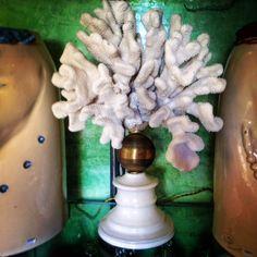 Salamastra Home Collection: Corallo bianco montato su sfera in ottone con base di maiolica --- White coral mounted on brass sphere with base in majolica.