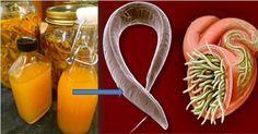Elimina qualquer tipo de parasita do teu corpo. Vermes e protozoários como a ameba entram no corpo por meio da água e da comida.