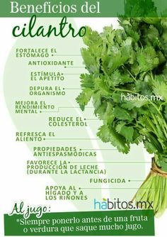 Simple nutrition top post advice to try this second at ref 6404829014 . Health And Nutrition, Health And Wellness, Health Fitness, Natural Medicine, Herbal Medicine, Fruit Benefits, Salud Natural, Medicinal Plants, Natural Healing