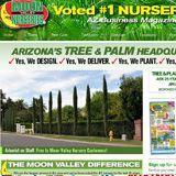 Tree and Plant Nursery Valley Nursery, Plant Nursery, Nurseries, Shrubs, Arizona, Palm, Moon, Gardening, Website