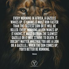 If you're looking for the perfect morning motivation then these quotes are going to be perfect!