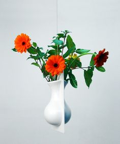 Hanging Wall Flowers - White  from Ernest Perera via Dot & Bo