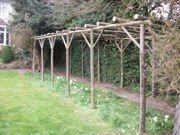 Rent Pergola For Wedding Trellis Fence, Garden Arches, Garage Pergola, Pergola Designs, Pergola Ideas, Woodland, Backyard, Outdoor Structures, Rustic