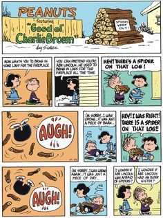 That does it...no fireplaces! Peanuts for 11/23/2014 | Peanuts | Comics | ArcaMax Publishing