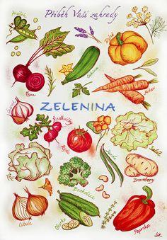 Growing Plants, Indoor Plants, Gardens, Elementary Science, Ideas, Inside Plants, Outdoor Gardens, Thoughts, Garden