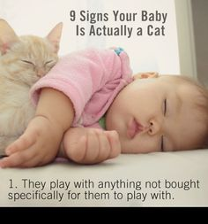 Kittens are cute, funny, and sometimes grumpy ... just like a baby! They both like toys and can be picky about their food. Is it possible your baby is actually a cat? Find out and read through these hilarious 9 signs.