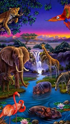 Jungle friends at Midnight Party hour! Beautiful Nature Pictures, Beautiful Nature Wallpaper, Beautiful Birds, Animals Beautiful, Amazing Nature, Animal Paintings, Animal Drawings, Graffiti Kunst, Afrique Art