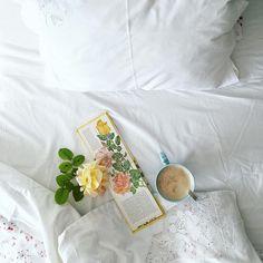 O galão perfeito, um livro antigo que a minha mãe comprou numa feira sobre rosas e a luz do nosso quarto. Bom dia! #home#light#naturelovers#livefolk#liveauthentic#allthingsbotanical#inspiredbynature#livelittlethings#thatsdarling#botanical#booksandbo