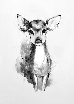 Cute deer sketch