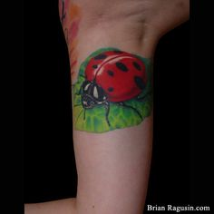 #Ladybug good luck #tattoo #ladybird Luck Tattoo, Lady Bug Tattoo, Cool Tats, Arm Tattoos, Ladybug, Tatting, Things To Think About, Tattoo Ideas, Projects To Try