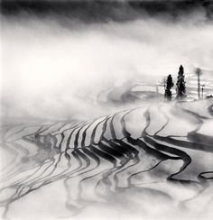 Yuanyang, Study 1, Yunnan, China, 2013 by Michael Kenna