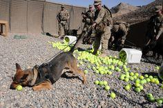 Tennis ball overload