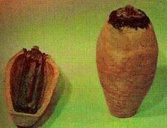 THOUGHTS AND SUCCESS OF BELIEVABLE AND UN-BELIEVABLE:              BAGHDAD BATTERY THE BAG...
