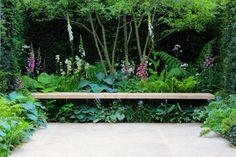 Sitzbank inmitten der grünen Oase aus Heckenpflanzen und hohen Blumen