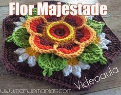 VIDEOAULA – Flor Majestade                                                                                                                                                                                 Mais