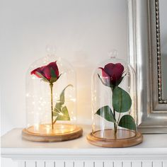 Browse glass domes from Inspire yourself with Beauty & The Beast bell jars for adding fairy lights. The Bell Jar, Bell Jars, Glass Domes, Glass Vase, Enchanted Rose, Cute Diys, Fairy Lights, Centerpieces, Candle Holders