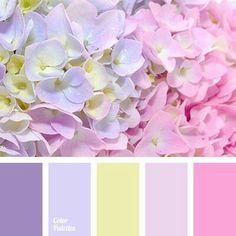 Purple Photography