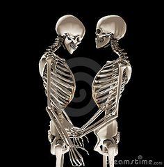 esqueletos humanos - Buscar con Google