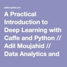 A Practical Introduction to Deep Learning with Caffe and Python // Adil Moujahid // Data Analytics and more