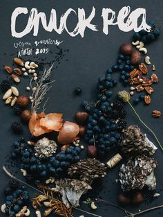 chickpea magazine winter 2015