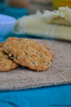 Easy homemade chocolate chip cookies and steps on how to make chocolate chip cookies. Easy Healthy Recipes, Healthy Desserts, Real Food Recipes, Free Recipes, Healthy Food, Snack Recipes, Cooking Recipes, Homemade Chocolate Chips, Homemade Chocolate Chip Cookies