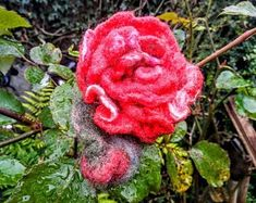 No sewing no glue forgotten profession autor galerytouchofrainbow Winter Sale, Rose, Flowers, Plants, Pink, Roses, Florals, Plant, Flower