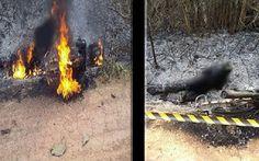R12 Noticias : Jovem morre carbonizado após bater em cabo de alta...