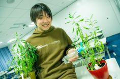 Mr.Kurihara  https://www.facebook.com/herbsdiary
