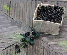 Make Dolls House Scale Miniature BlackBerries from No Hole Beads