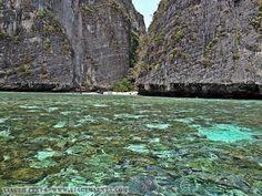 Dias 87 a 90 da viagem: Krabi, Au Nang e Koh Phi Phi, Tailândia - Viagem Lenta Krabi, Littoral Zone, City, Pictures