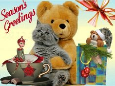 Christmas Friends - christmas, winter, cat, teddy, xmas, friends Winter Cat, Xmas, Christmas, Teddy Bear, Seasons, Wallpaper, Friends, Amigos, Seasons Of The Year