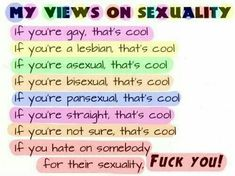 If you're demisexual, that's cool If you're transgender, that's cool If you're part of the LGBTQ+ community, that's cool Lgbt Quotes, Lgbt Memes, Wife Quotes, Friend Quotes, Quotes Quotes, Equality Quotes, Nos4a2, Isak & Even, Pansexual Pride