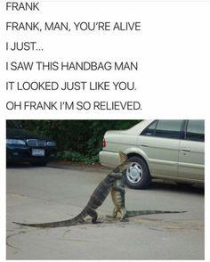 63 Random Memes That Will Make You Laugh - - Funny Shit, Really Funny Memes, Stupid Funny Memes, Funny Relatable Memes, Haha Funny, Funny Cute, Funny Stuff, 9gag Funny, Funny Things