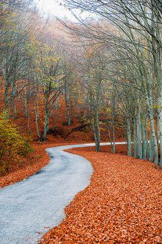 colours of Autumn, Greece