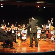 Concierto de música instrumental con el Colegio República de Francia. AF Centro 11 de octubre 18:00 Entrada libre