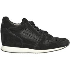 Ash Dean Mesh Suede Sneakers ($78) ❤ liked on Polyvore featuring shoes, sneakers, mesh shoes, suede leather shoes, ash shoes, round cap and suede sneakers