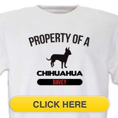Check our Chihuahua Property T-Shirt to celebrate you #pet #animal#dog love. Just $18.99 + an extra $5off Just Enter Coupon Code: SAVEMORE5 at checkout at http://www.petproductadvisor.com/store/mc/property-chihuahua-tshirt.aspx