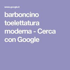 barboncino toelettatura moderna - Cerca con Google