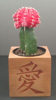 Love Kanji Succulent Planter DIY Kit from by 5yearwoodshop on Etsy