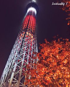 Things to see in Tokyo, Japan -  Tokyo Skytree, the tallest tower in Japan! Buy tickets to go all the way to the top or head to Tokyo Skytree Town for some fun shopping, dining and entertainment.