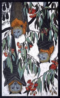 Rachel Newling: Grey-Headed Flying Fox x 43 cm Edition of 50 Hand coloured linocut on handmade Japanese paper Art And Illustration, Illustrations, Linocut Prints, Art Prints, Australian Artists, Of Wallpaper, Printmaking, Graphic Art, Cool Art