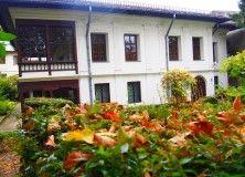 Casa Melik Plants, Houses, Plant, Planets