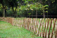 bamboo garden fence on budget Cheap Garden Fencing, Diy Garden Fence, Backyard Fences, Backyard Landscaping, Bamboo Trellis, Bamboo Panels, Bamboo Fence, Faux Bamboo, Bamboo Screening Fence