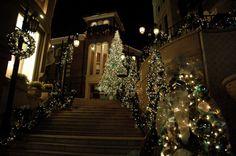 Что мы можем сделать... #новыйгод #елка #новогодняяелка  #оформление #декор #дизайн #банкет  #флористика #композиция