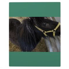 Horse Photo Tabletop Plaque with Easel